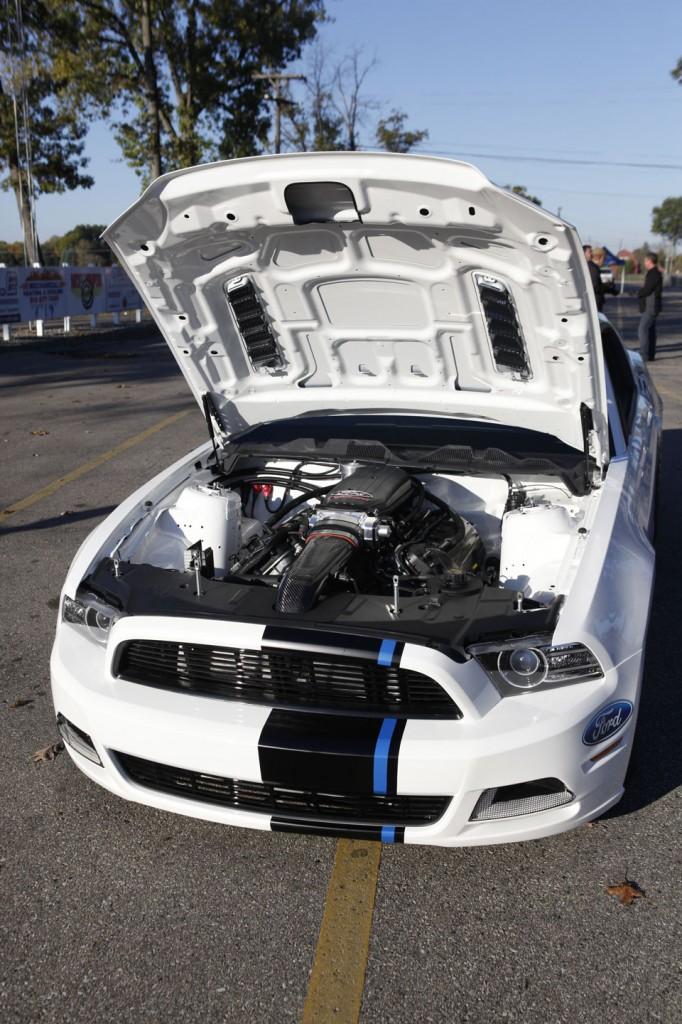 Mustang Cobra 4